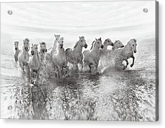 Illusion Of Power (13 Horse Power Though) Acrylic Print