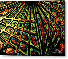 Illusions Acrylic Print by Lori-Anne Fay