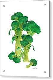 Illustration Of Broccoli Acrylic Print by Nan Wright