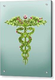 Illustration Of Caduceus Symbol Acrylic Print by Fanatic Studio / Science Photo Library
