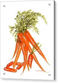Illustration Of Carrots Acrylic Print by Nan Wright