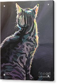 I'm Not Listening Acrylic Print by Kimberly Santini