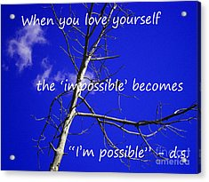 I'm Possible Acrylic Print by Drew Shourd