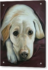 I'm Ready For Bed Acrylic Print by Debbie Finley