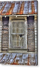 I'm Watching You Acrylic Print by Benanne Stiens