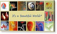 Image Mosaic - Promotional Collage Acrylic Print by Ben and Raisa Gertsberg