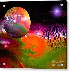 Imagination Gone Wild Acrylic Print