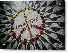 Imagine Peace Acrylic Print by Stacey Granger