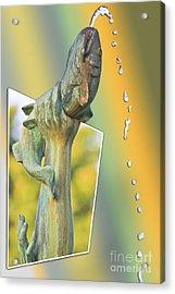 Img 78 Acrylic Print