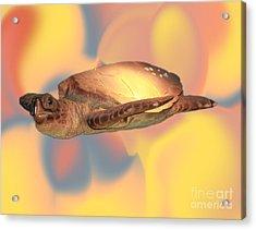 Img 89 Acrylic Print