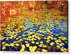 Impression Of Waterlily Pond Acrylic Print by Charline Xia