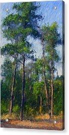 Impression Trees Acrylic Print