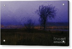 Acrylic Print featuring the photograph Impressionist Landscape by Julie Lueders