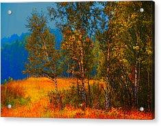 Impressionistic Autumn Acrylic Print by Jenny Rainbow