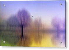 Impressions Acrylic Print by Jessica Jenney