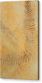 Imprints - Abstract Art By Sharon Cummings Acrylic Print by Sharon Cummings