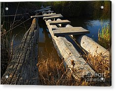 Improvised Wooden Bridge Acrylic Print