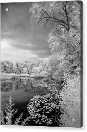 In A Dream Acrylic Print by John Rivera