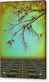 In A Land Far Far Away Acrylic Print by Jan Amiss Photography