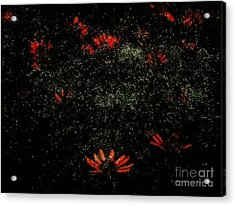 In A Twinkling Acrylic Print