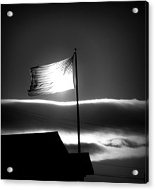 In All Her Glory Acrylic Print by Jennifer Compton