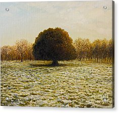 In Anticipation Of The Spring Acrylic Print by Kiril Stanchev