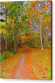 In Beauty I Walk Acrylic Print