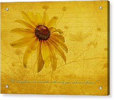 In Every Flower See A Miracle Acrylic Print by Mother Nature