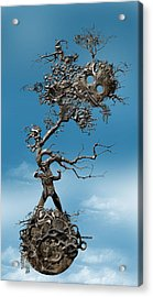 In Fato Scientia  Acrylic Print by Andy Walsh