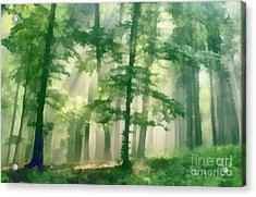 In Forest Acrylic Print by Odon Czintos