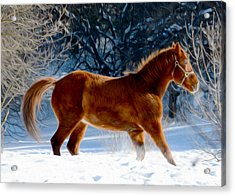 In Motion Acrylic Print