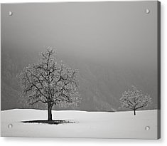 Acrylic Print featuring the photograph In Perspective by Antonio Jorge Nunes