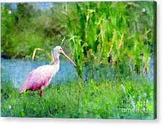 Acrylic Print featuring the photograph In The Bayou #1 by Betty LaRue