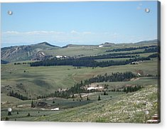 In The Bighorn Mountains Acrylic Print