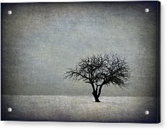 In The Bleak Of Midwinter Acrylic Print