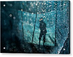 In The Blue Morning Acrylic Print