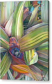 In The Conservatory - Bromeliad Acrylic Print
