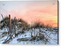 In The Dunes Of Pensacola Beach Acrylic Print by JC Findley