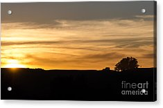 In The Evening I Rest Acrylic Print