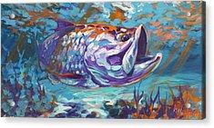 In The Flats Acrylic Print by Savlen Art