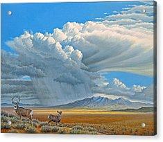 In The Foothills-mule Deer Acrylic Print