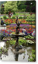 Acrylic Print featuring the photograph In Living Color by Natalie Ortiz