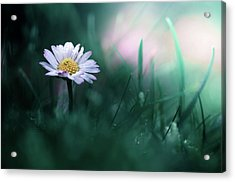 In The Garden Of My Heart Acrylic Print