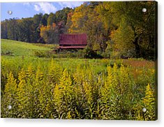 In The Heart Of Autumn Acrylic Print by Debra and Dave Vanderlaan
