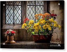 In The Light Acrylic Print by Adrian Evans