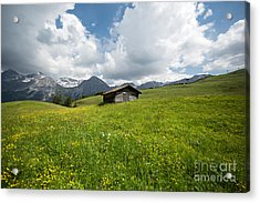 In The Middle Of Green Acrylic Print