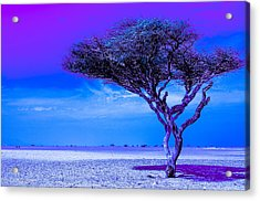 In The Middle Of Nowhere Under A Purple Sky Acrylic Print