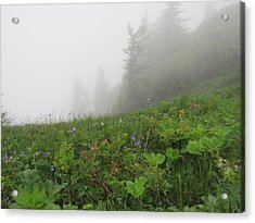 Acrylic Print featuring the photograph In The Mist - 1 by Pema Hou
