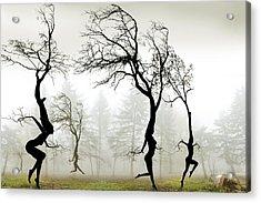In The Mist Acrylic Print by Igor Zenin
