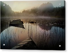 In The Misty Morning Acrylic Print